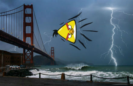 Chuck, the yellow Angry Bird, Crashing into The Golden Gate Bridge